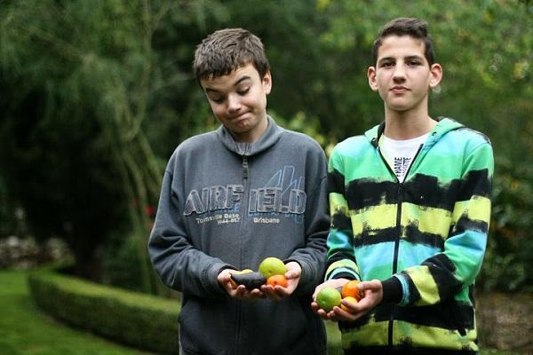 Uspješna kampanja škole  Ostrog jedan je od poticaja za organiziranje akademije.