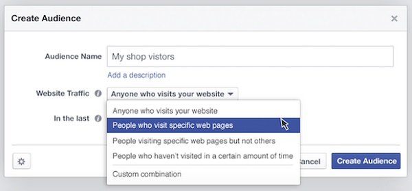 Facebok audience