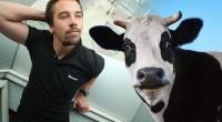 Kako zajedno idu kodiranje i krave?