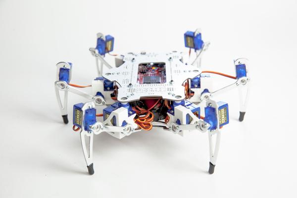 Robot_Pauk