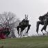 Boston Dynamics Santa prikaz