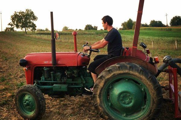 vibor_traktor_jpg