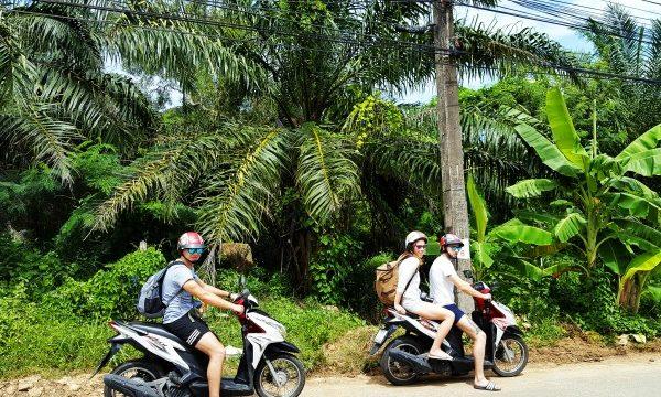nomadi_tajland